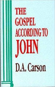 The Gospel According To John (Pillar Commentary Series) – Used Copy