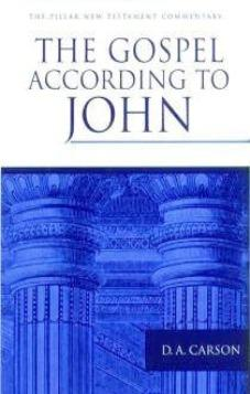 The Gospel According To John (Pillar Commentary Series) (Used Copy)