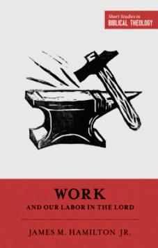 Short Studies in Biblical Theology: Work